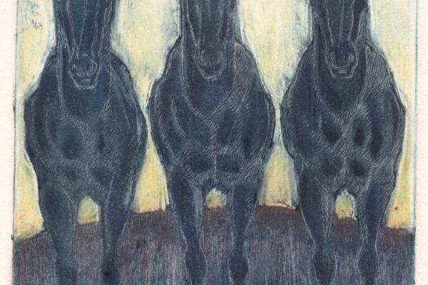 Three Horses-White Line